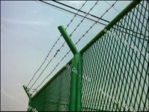 PVC Coated Barbed Wire Fence pictures & photos