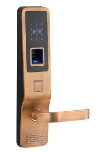 Metal Fingerprint Security Lock for Hotel Door (JS-002-G) pictures & photos