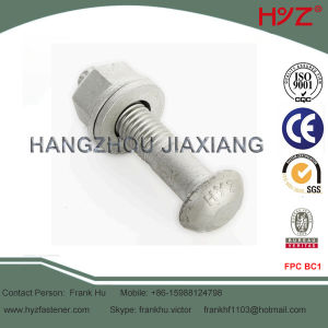 Steel Structural Tension Control Bolt S10t pictures & photos