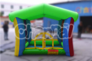 Bounce House Ball Pit Inflatable Bouncy Caslte (QB057) pictures & photos