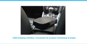 Air Purifier for Mini Car-Ozone Generator High Air Quality J pictures & photos