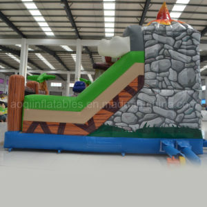 Inflatable Treasure Hunt Obstacle Course (AQ01421) pictures & photos