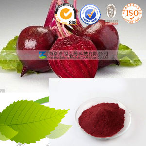 Factory Supply Instant Red Beet Root Powder pictures & photos