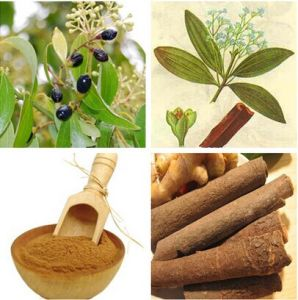 Ceylon Cinnamon Bark Extract pictures & photos