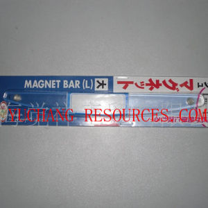 Transparent Plastic Magnetic Strip (OI42003) pictures & photos