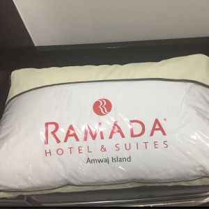 Ramada Hotel Pillow Supplier (DPF060904) pictures & photos
