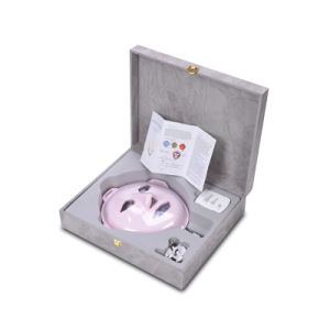 Facial Massage and Anti-Aging Wrinkle Removal Beauty Equipment with LED Light Wy-1003 pictures & photos