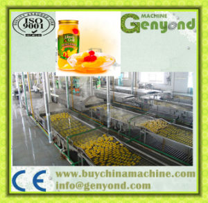 Canned Fruit in Syrup Production Line pictures & photos