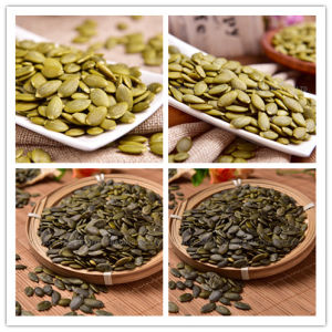 Pumpkin Seeds Kernel From China with Quality AA for Bakery pictures & photos