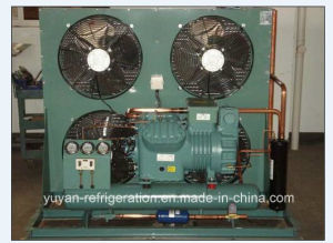 Bizter Brand Condensing Unit for Cold Room pictures & photos