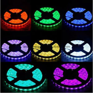Ce and Rhos 60SMD5050 Yellow LED Strip pictures & photos