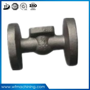 OEM Hot Sale Wrought Iron Steel Forging for Metal Forging pictures & photos