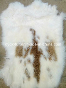 High Quality Soft and Thick 100% Real Rabbit Skin pictures & photos