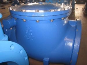 BS5155 Swing Check Valve pictures & photos
