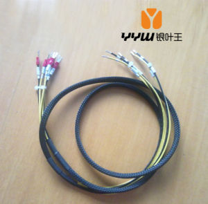 19 Years′ Experience Wire Harness&Cable Assembly Manufacturer for All Kinds of Application