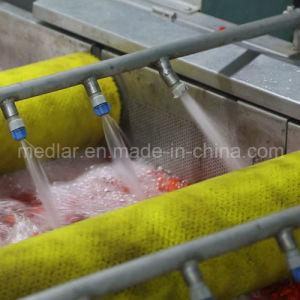Medlar Lycium Barbarum Chinense Goji Berry Dried Fruit pictures & photos