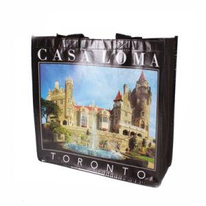 Customized Non Woven Eco Handbag