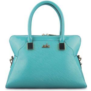 Famous Designer Handbags Leather Women′s Handbag Ladies Bag (00384)