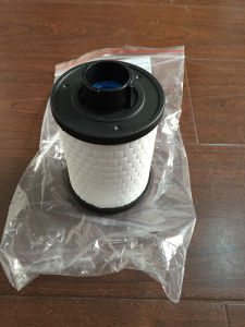 Fuel Filter 77365902 for FIAT pictures & photos