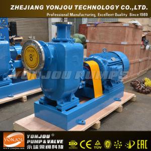 Zw Self-Priming Sewage Pump pictures & photos