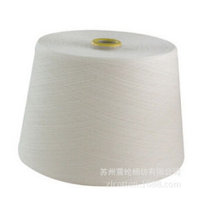 Compact Siro Polyester/Viscose Yarn 50/50 Ne30/1 pictures & photos