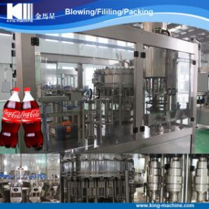 Complete Carbonated Beverage Filling Machine pictures & photos