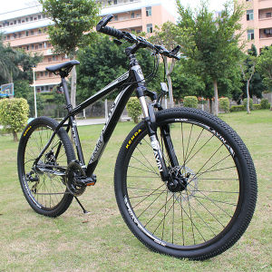 24 Speed Aluminium Alloy Mountain Bike with Good Quality Parts pictures & photos
