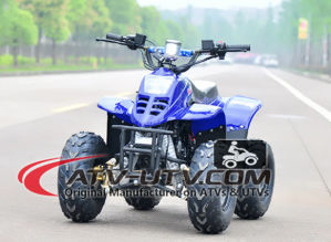 Best Selling 2 Stroke Engine 49cc ATV pictures & photos