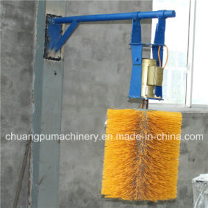 Cow Body Massage Equipment Hanging Type Body Brush pictures & photos