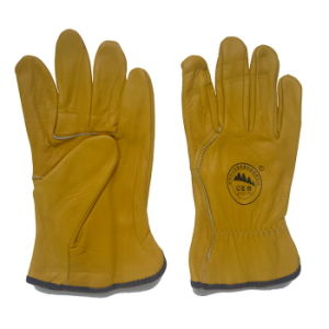 Gloden Color Leather Truckers Driving Gloves pictures & photos