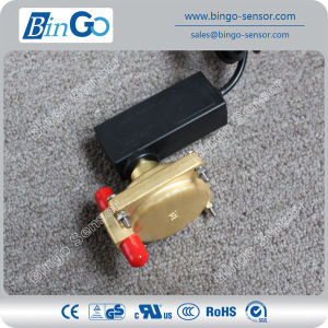 Differential Pressure Flow Switch pictures & photos