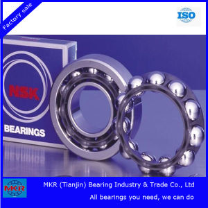 Factory Direct Hot Sale Japan NSK Bearing pictures & photos