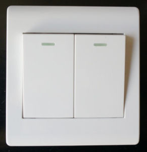 2gang 1way Plate Switch