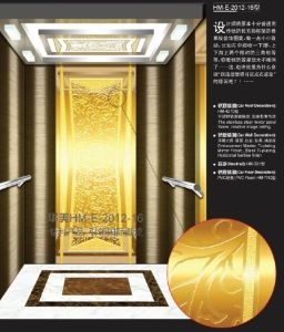Isuzu AC Vvvf Elevator pictures & photos