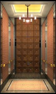 Modernize Passager Elevator pictures & photos
