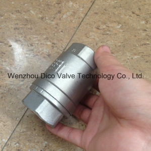 Ss316 Spring Disc Check Valves with NPT Thread pictures & photos