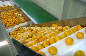 High Quality Juice Production Line pictures & photos