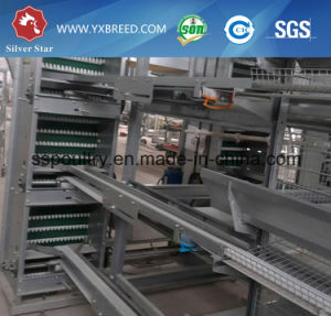 Hot Sell Design Layer Chicken Cages for Africa pictures & photos