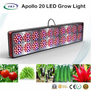 3W*300PCS High Lumens Apollo 20 LED Grow Light pictures & photos