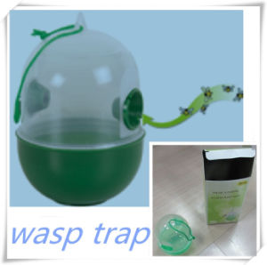 Drop Shaped Wasp Trap (V16004) pictures & photos