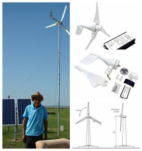 300W Wind Turbine Generator Wind Turbine Generator Solar Street Light pictures & photos