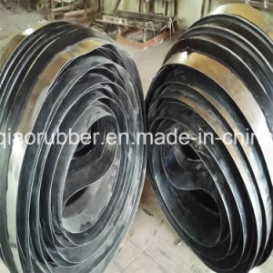 High Performance Steel Edge Water Stop Sold to Thailand pictures & photos