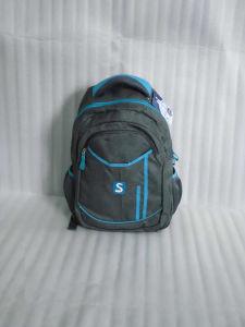 Men/Boys/Students Shoulder Backpack Bag for Travel/School pictures & photos