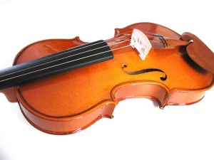 Student Violin pictures & photos