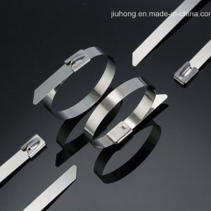 Stainless Steel Cable Ties- Ball-Lock Uncoated Ties pictures & photos