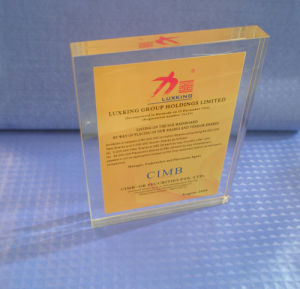 Customize Ad-208 Clear Laser Engraved Acrylic Hot Press Trophy Plaque pictures & photos