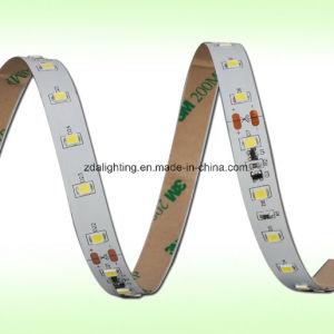 "12V-24V 60LEDs/M SMD2835 6000k Cool White ""S"" Shape LED Ribbon pictures & photos"