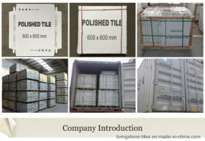 Foshan Factory Newest Cement Design Six Face Ceramic Floor Tile for Airport pictures & photos