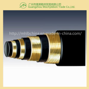Wire Spiral Hydraulic Hose Fitting (EN856-4SP-1/4) pictures & photos