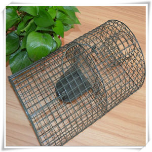 Animal Trap Mice Cage Pest Control (V14023) pictures & photos